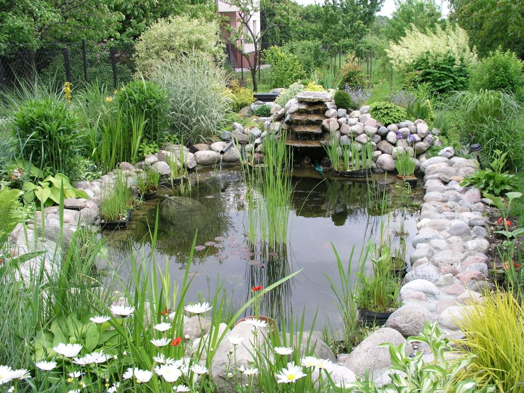 Elements of garden design water architecture student chronicles Design pond