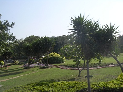 Garden along the main road